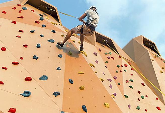 Стена для скалолазания Rock Climbing Wall