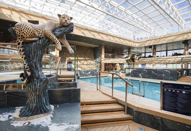 Крытый бассейн Safari